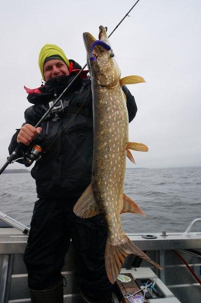 все о рыбной рыбалке осенью