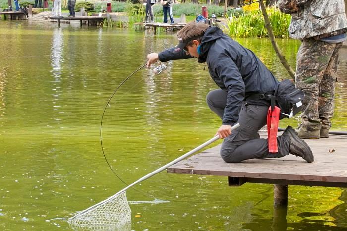 когда ловить прудовую форель
